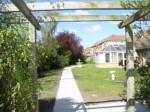 marjorie collins garden