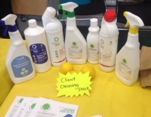 green pop up market eco cleaning products